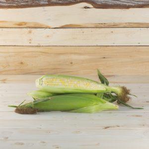 maïs sucré